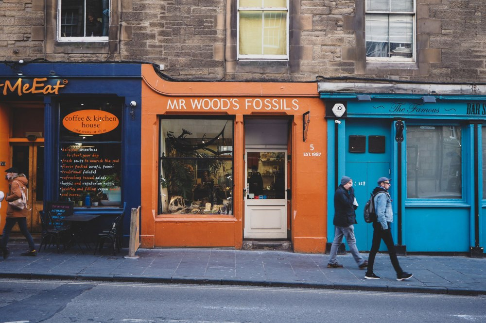 Mr-Woods-Fossils-Edinburgh (3).jpg