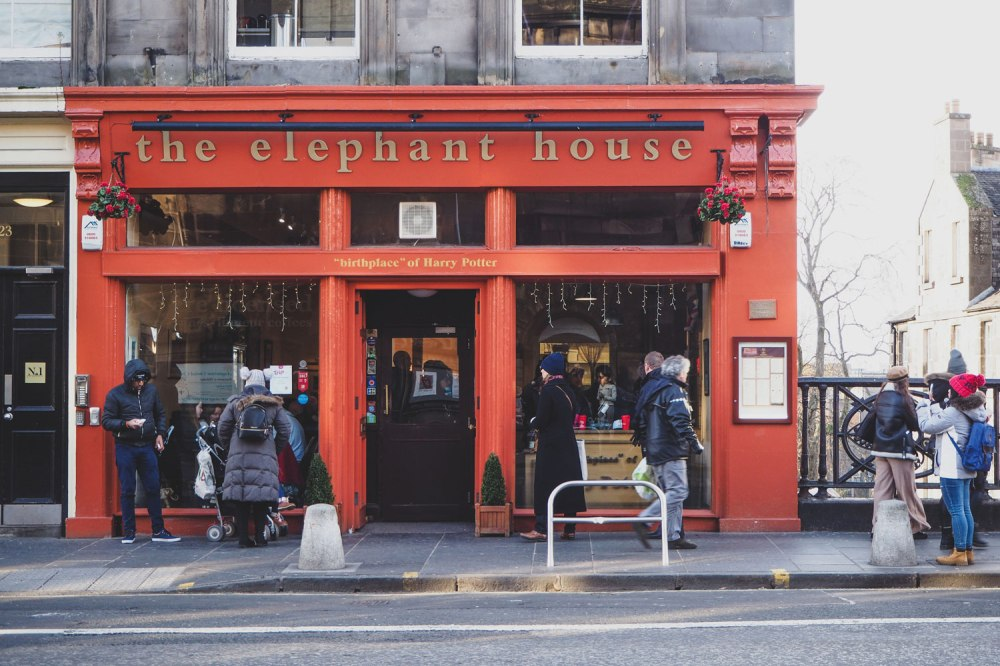 The-Elephant-House-Edinburgh (1)