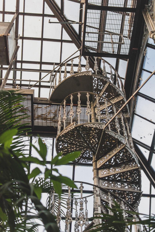 Glasgow-Botanic-Gardens (30)