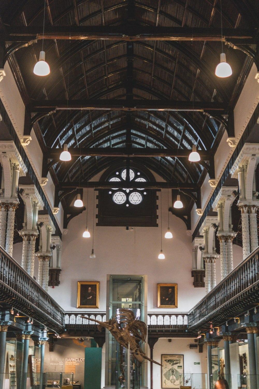 Hunterian-Museum-Glasgow (15)