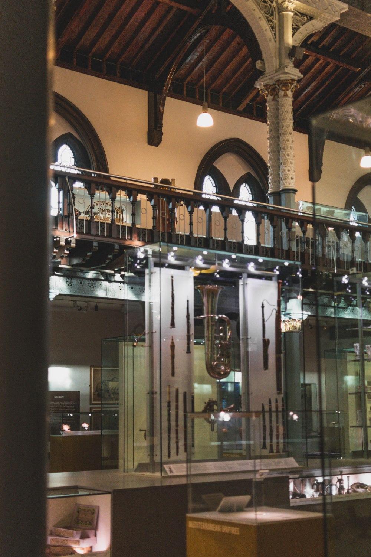 Hunterian-Museum-Glasgow (18)