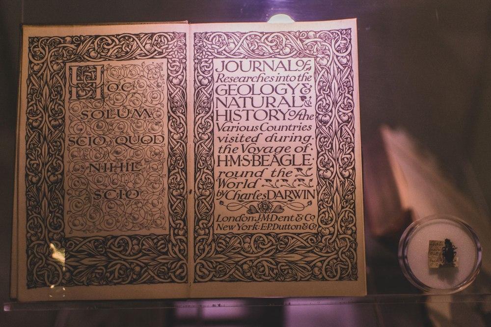 Hunterian-Museum-Glasgow (20)