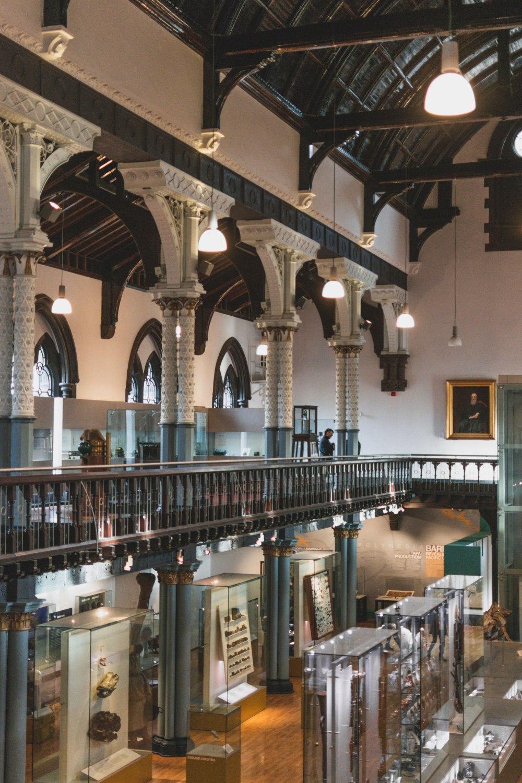 Hunterian-Museum-Glasgow (26)