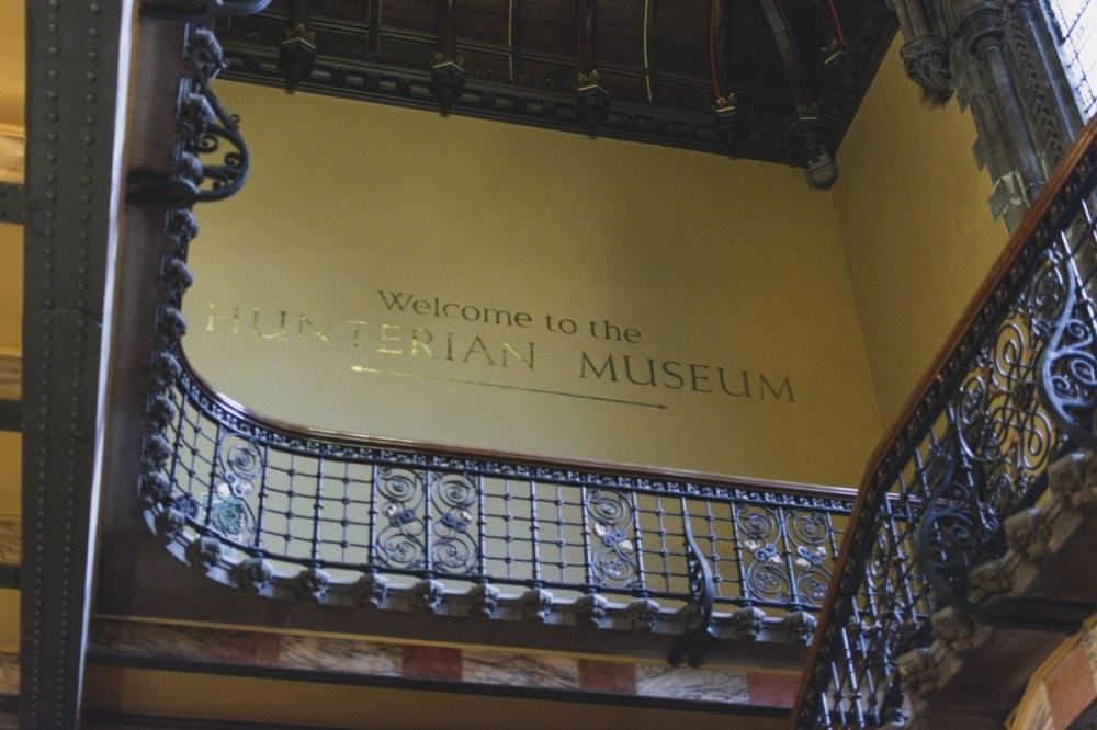 Hunterian-Museum-Glasgow (9)