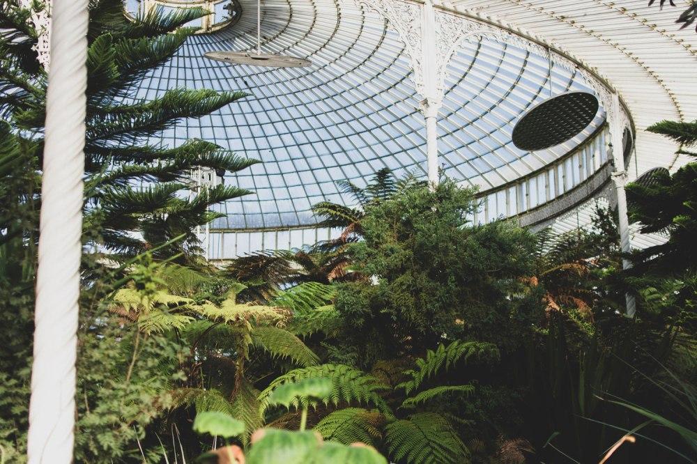 Kibble-Palace-Glasgow-Botanic-Gardens (20)