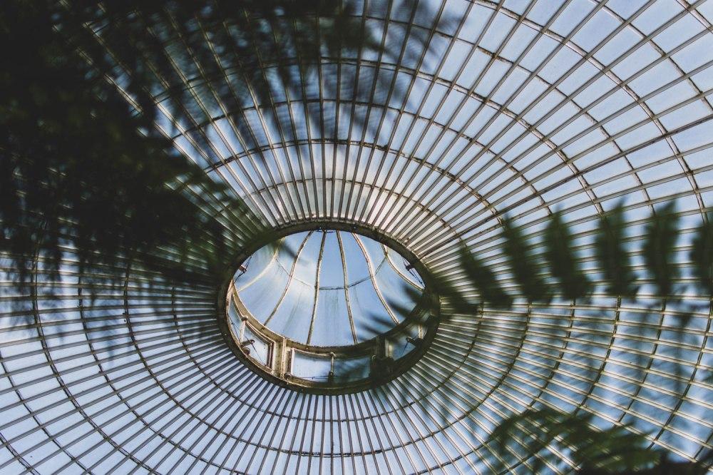 Kibble-Palace-Glasgow-Botanic-Gardens (30)