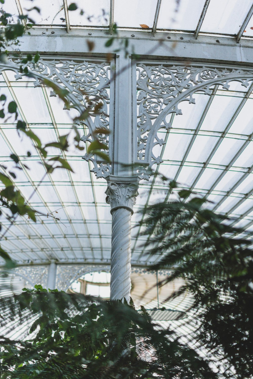 Kibble-Palace-Glasgow-Botanic-Gardens (6).jpg