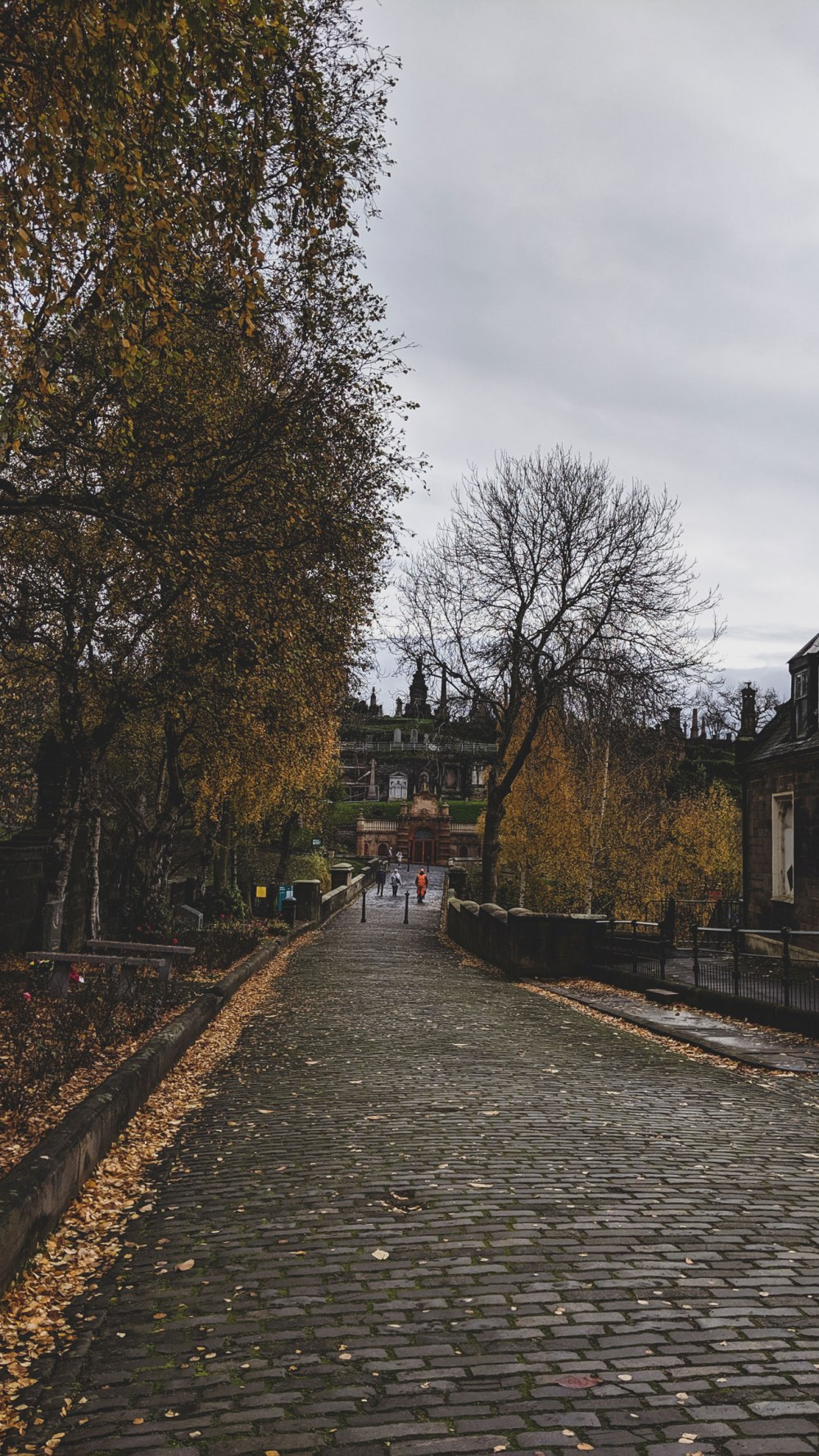 Glasgow (5)