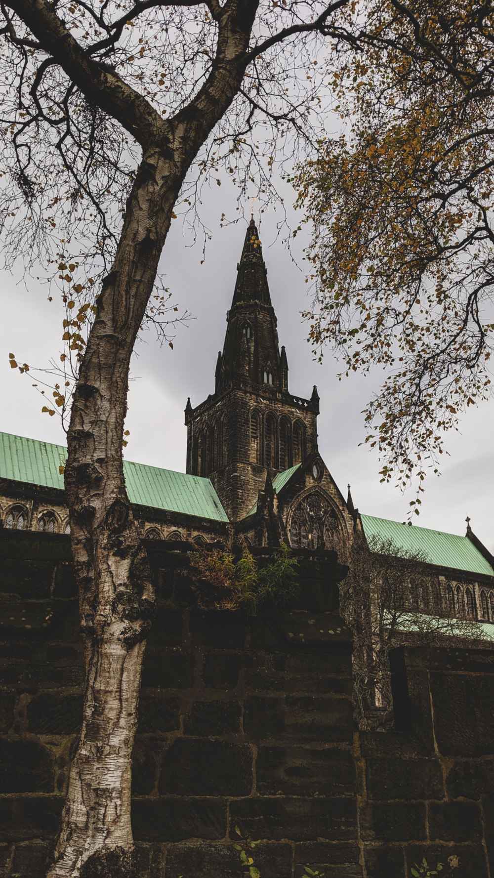 St-Mungos-Cathedral-Glasgow (14)